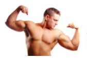 aminozuren-fitness