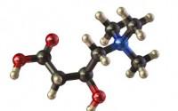 Carnitine molecuul